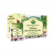 Purple plant flower sprout / Kasvirag-Echinacea (Echinaceae purpureae herba) Tea filters